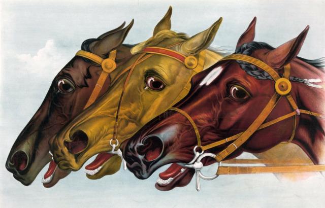 競馬のイメージ画像