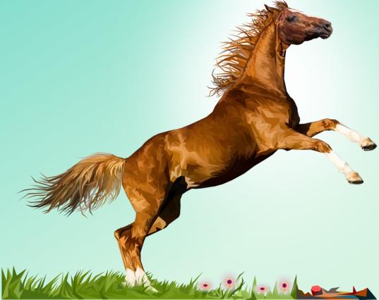 馬のイメージ画像